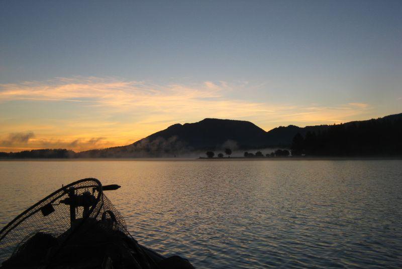 Morgennebel am Forggensee